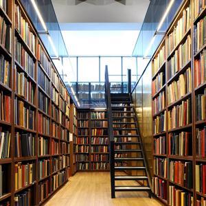 Библиотеки Мурашов