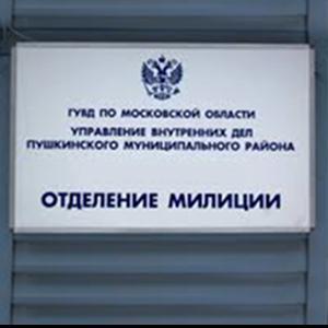 Отделения полиции Мурашов